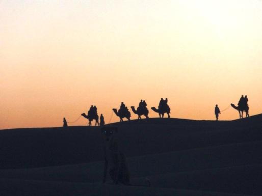 Camel Safari - Jaisalmer