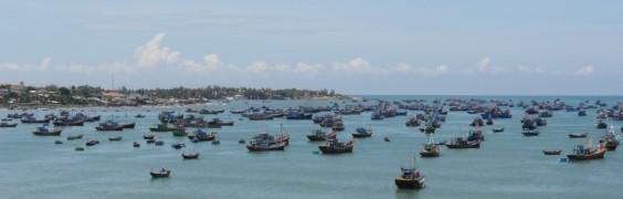 Harbour - Mui Ne