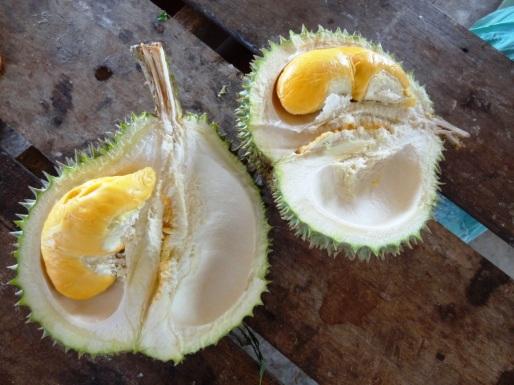 Durian - Penang