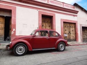 Coccinelle - San Cristobal