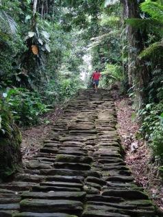 Last 1200 steps - Ciudad Perdida