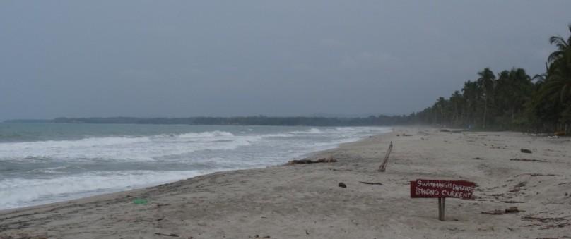 Palomino beache