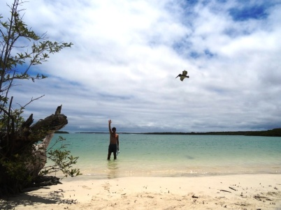 Tortuga bay - Santa Cruz island