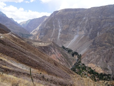 Sangalle oasis - Colca Canyon