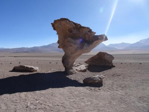 Stone tree - Sur Lipez